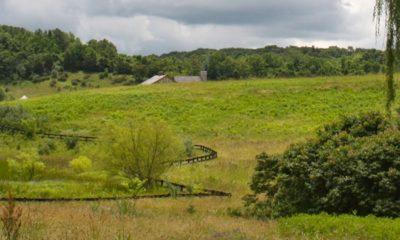 Augusta County Farm