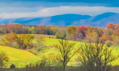 Rockingham County Scenery