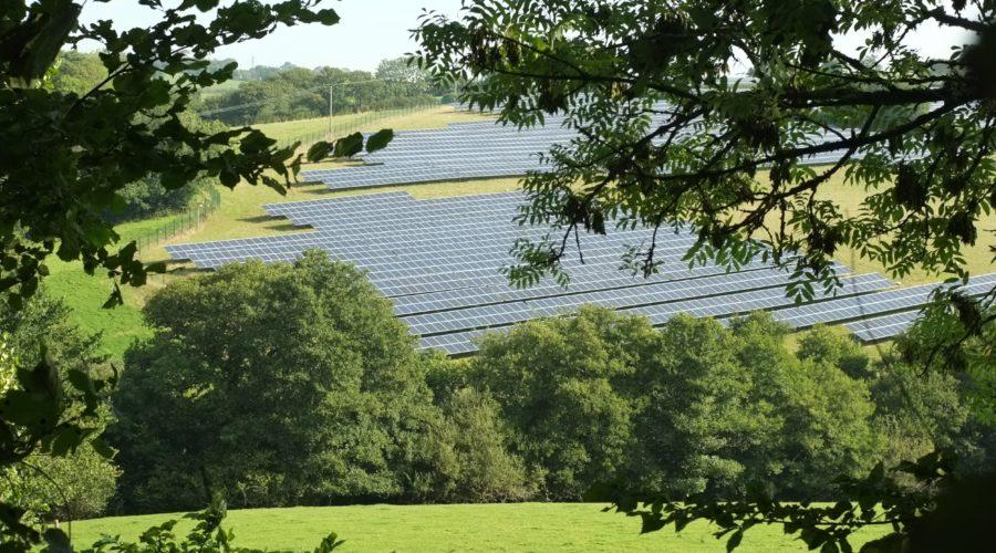 Stuarts Draft Solar – update