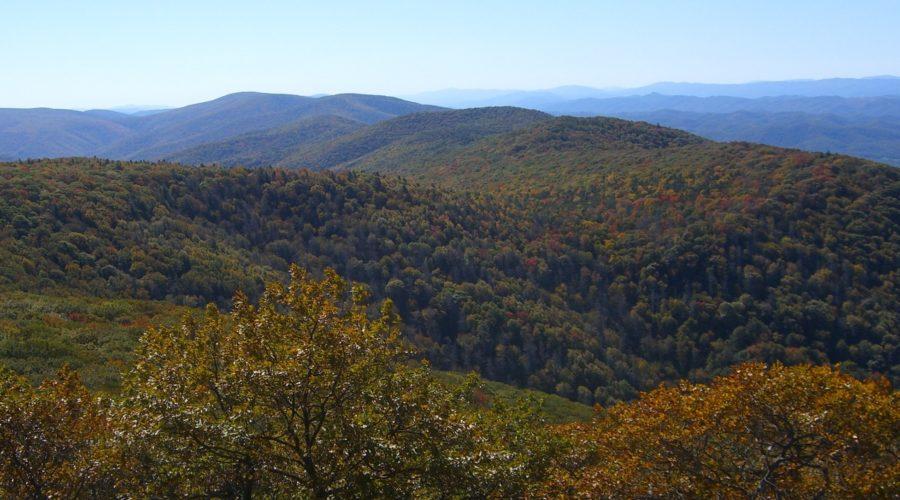 A Friend of Shenandoah Mountain