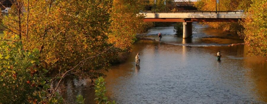 South River Joins Scenic River Map