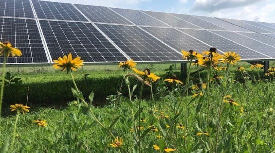 Take the Augusta County Utility-Scale Solar Survey